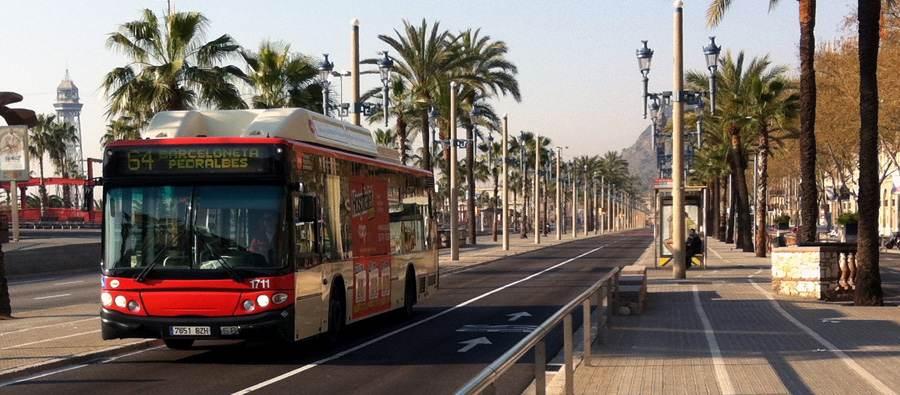 Bus TMB Barcelona